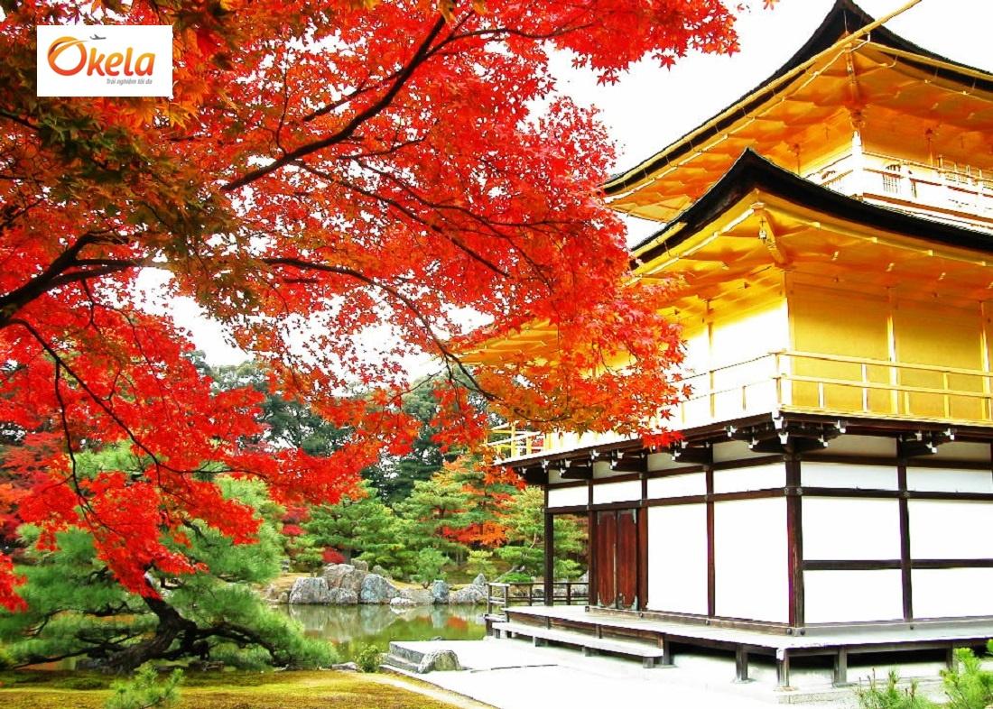 Tour du lịch Nhật Bản Tết 2020 - Chùa vàng Kinkakuji