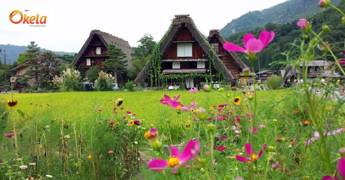 Địa điểm du lịch tại Nhật Bản - Làng cổ Shirakawago