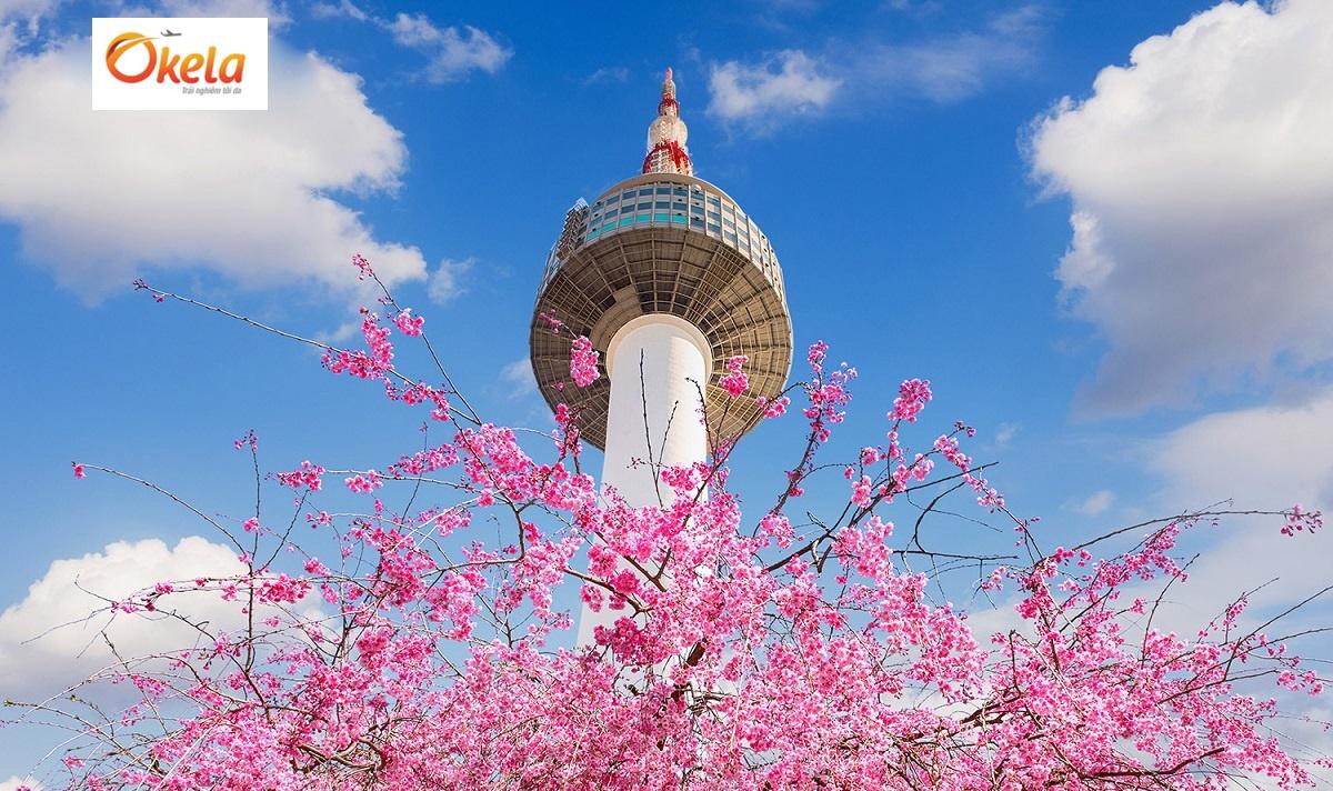 Tour du lịch Hàn Quốc Tết 2020: Mua ở đâu uy tín, giá rẻ?